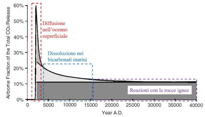assorbimento_naturale_anidride_carbonica