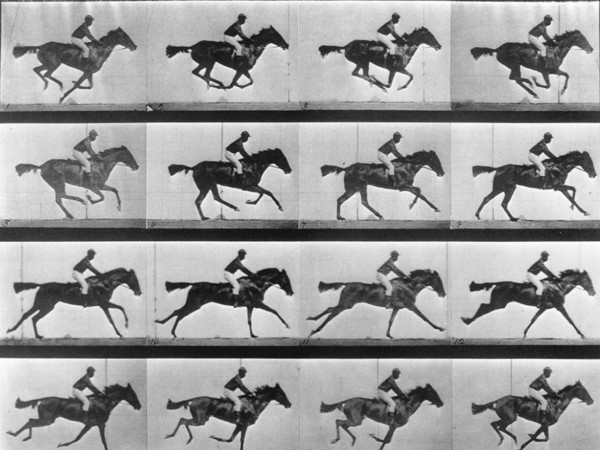 26337-Eadweard-Muybridge-horse-galloping-1024x789