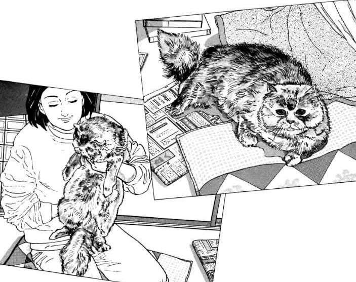 Allevare un cane: l'amore e il coraggio secondo Taniguchi