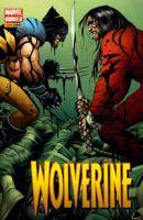 Copertina di Wolverine #197