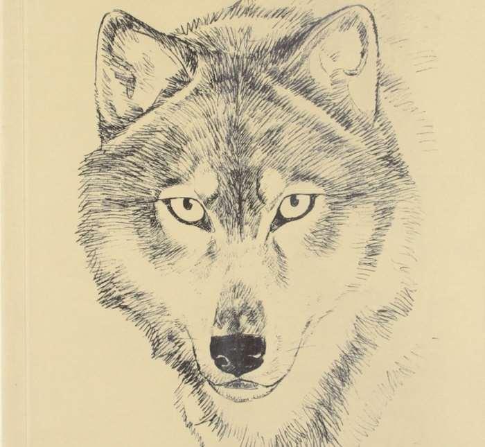 Seton #1 - Lobo, il re dei lupi (Imaizumi, Taniguchi)