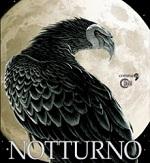 medium_notturno_sito