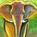 Incontro con Nazareno Giusti a Pescia (PT) presso la fumetteria L'Elefante