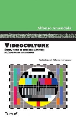 """""""Videoculture"""" il saggio di Alfonso Mendola presentato ad Avellino"""