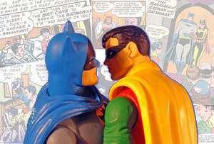 Robin_quadroi_gay_300