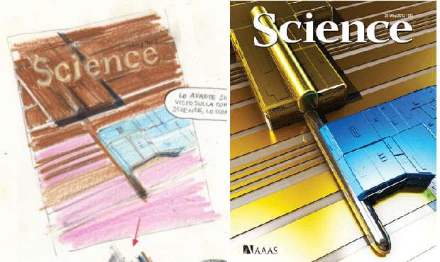 A destra: copertina di Science del 25 maggio 2012; a sinistra stessa copertina disegnata da Silvia Rocchi