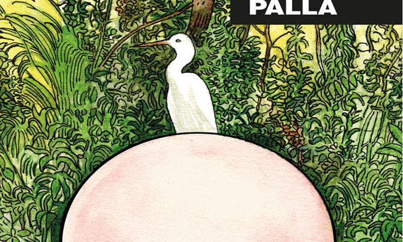 Palla: il sussurro carnale ammaliante di Paolo Bacilieri