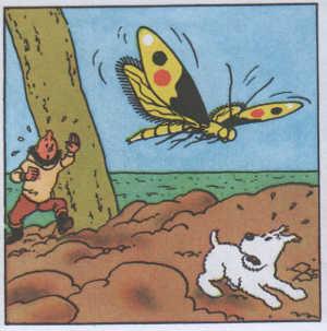 Scienziati strambi: Tintin e la stella misteriosa