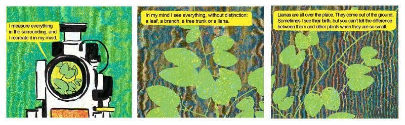 Treeclimbers_Interviste