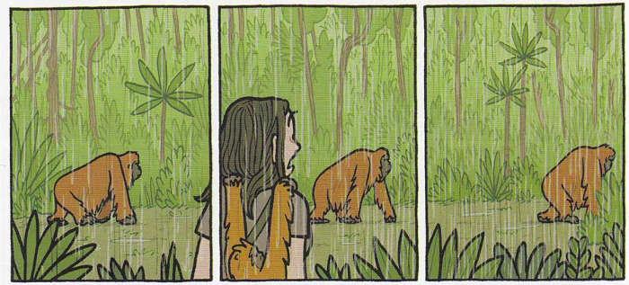 primati_galdikas_orango_BreVisioni