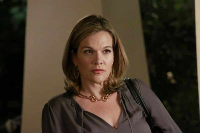 Catherine Dent da Agents of S.H.I.E.L.D. a Arrow