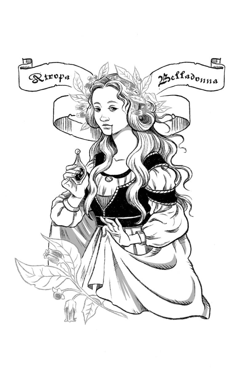 Atropa_Belladonna
