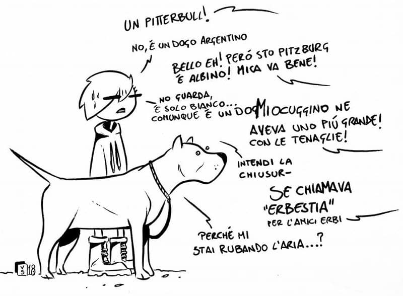 Guida Galattica per dogsitter (Salucci)_BreVisioni