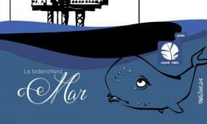 la balenottera mar evidenza