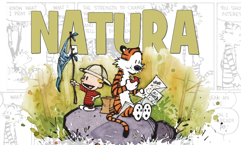 10_Watterson_NATURA_Essential 11