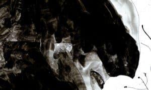 Cover-Perso-nel-bosco_web