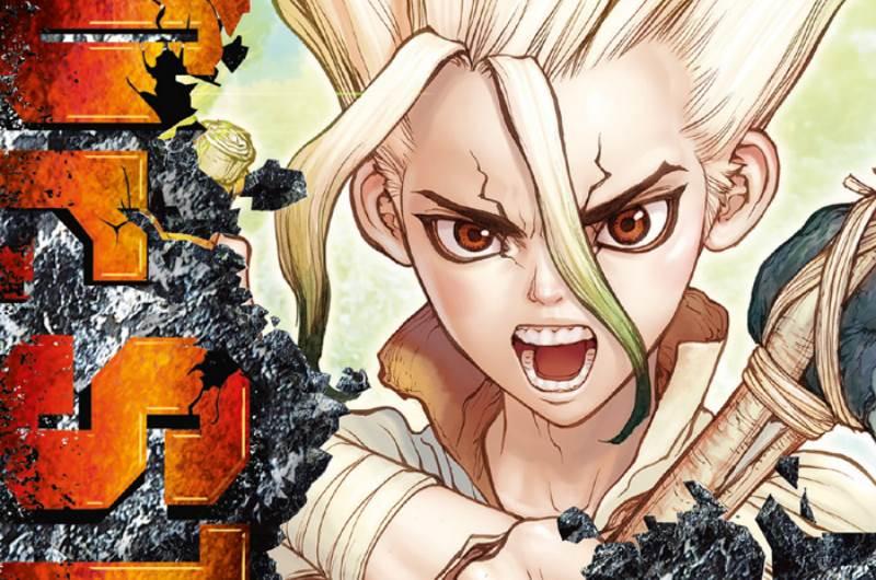 Dr. Stone #1 (Inagaki, Boichi)