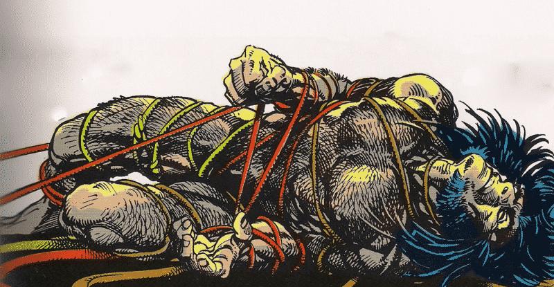 300-wolverine-arma-x7-e1562830728618_Essential 300 comics