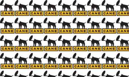 Logo Cane