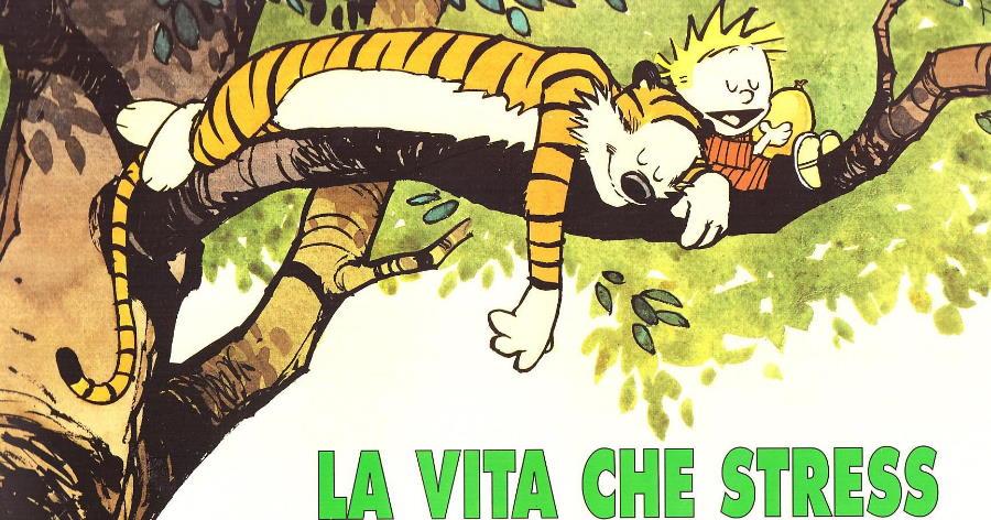 Bill Watterson – Calvin & Hobbes – La vita che stress