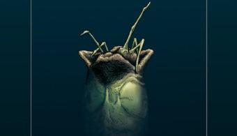 Aliens 3_LowRes RBG