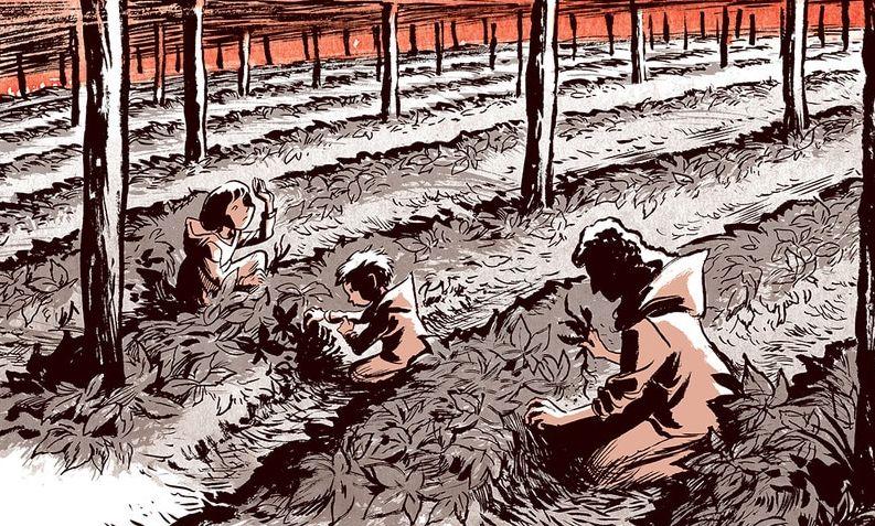 Ginseng Roots: il primo capitolo del ritorno di Craig Thompson all'autobiografia