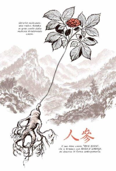 ginseng-roots-craig-thompson-06