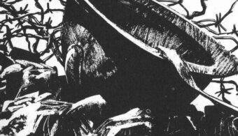Gino D'Antonio – L'uomo di Iwo Jima