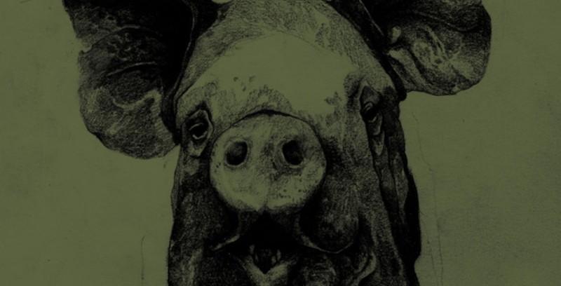 Il battesimo del porco: una blasfema fiaba di ribellione
