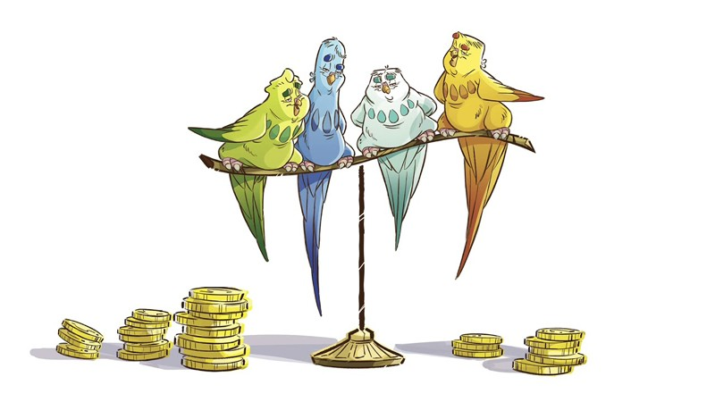 Il Negozio di Peter: gangster contro pappagalli italoamericani